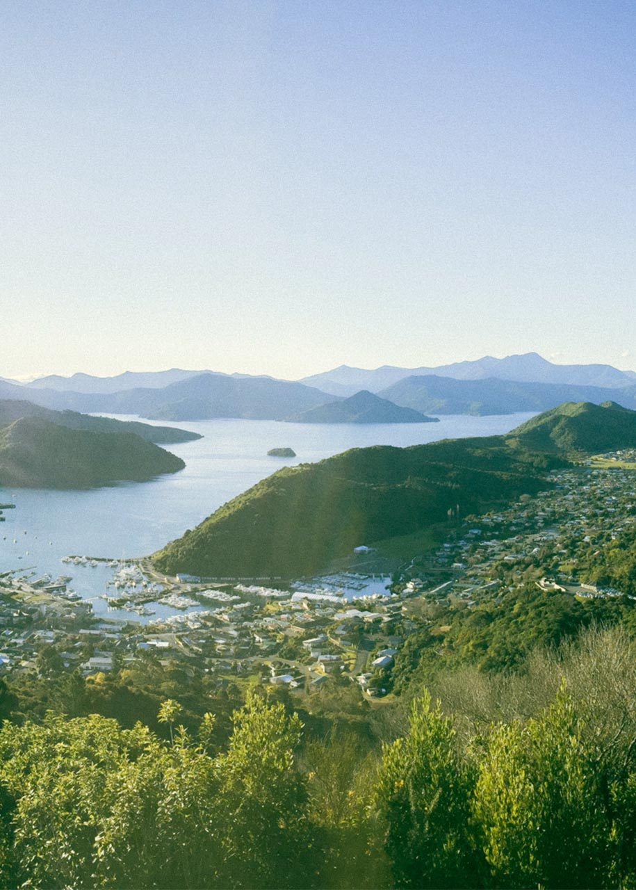 Picton view from hilltop